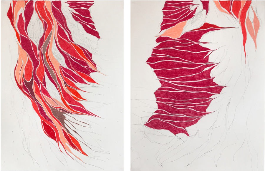 Caminho Magenta / The Magenta Way, 2011 Grafite e lápis de cor sobre papel 73 x 106 cm Foto: Renan Rêgo